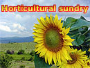 Horticultural sundry